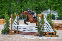 St Chris Wed (5-8-19) USHJA and Green Hunter 3'