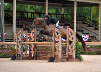 Maryland H&P (9-10-20) High Performance and 3'6-3'9 Green Hunter
