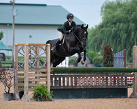 3'6 Junior Hunter (6-24-16)