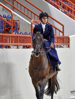 Ladies Side Saddle (8-24-16)