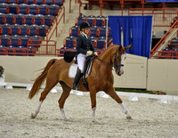 Commonwealth Dressage I Saturday (8-20-16) Harrisburg, PA