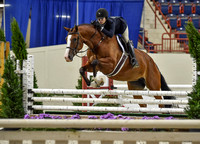 Harrisburg National Horse Show Friday (8-26-16)