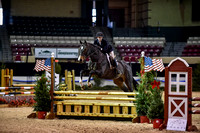 MAEF (11-17-17) Open Equitation 2'9