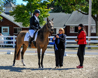 Class 433 Dressage Equitation for AA (10-1-17)