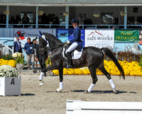 Class 525 FEI Grand Prix Freestyle under 25 (10-1-17)